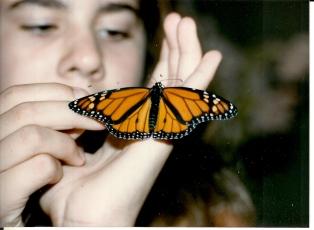Deb & monarch